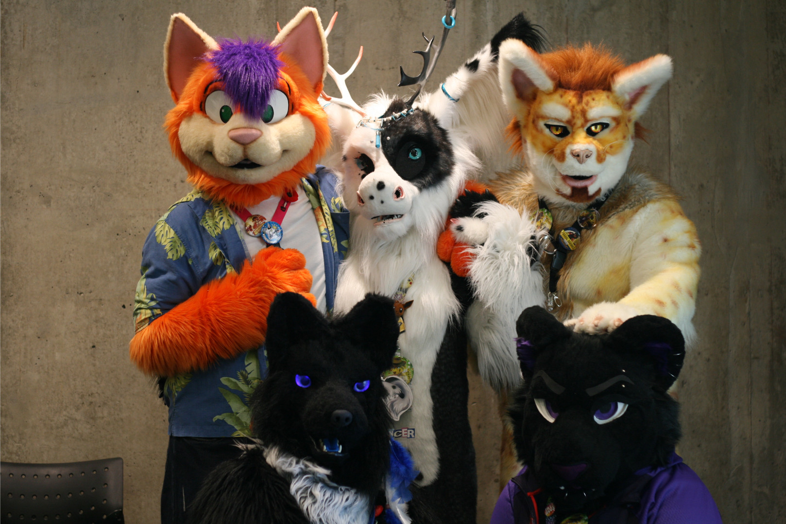 CanFURence - Schedule
